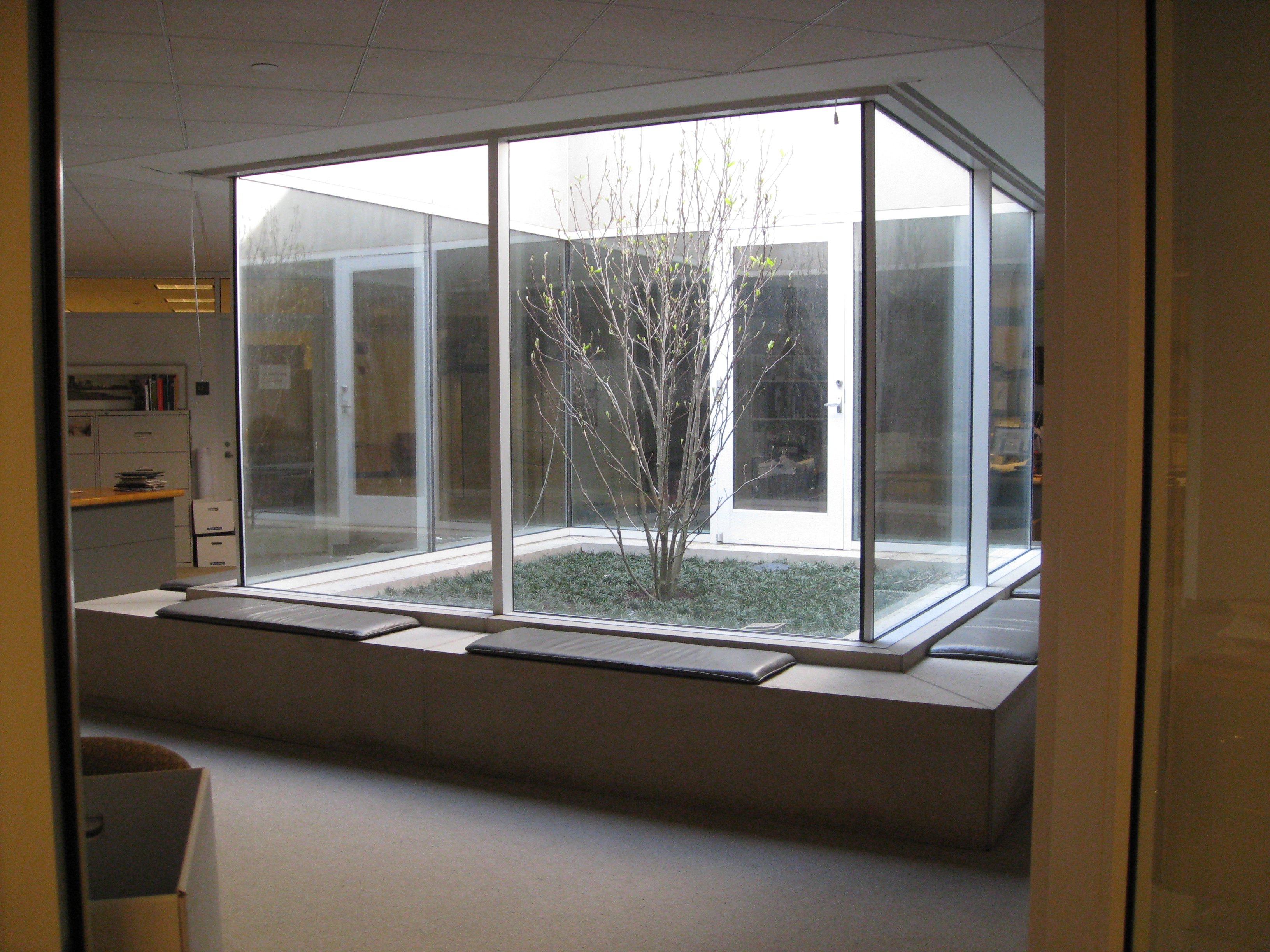 View of the atrium from my office door dma canvas What is an atrium in a house