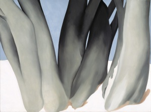 Georgia O'Keeffe, Bare Tree Trunks with Snow, 1946, Dallas Museum of Art, Dallas Art Association Purchase.