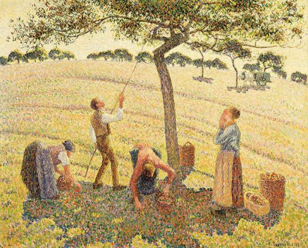 Camille Pissarro, Apple Harvest, 1888, Dallas Museum of Art, Munger Fund