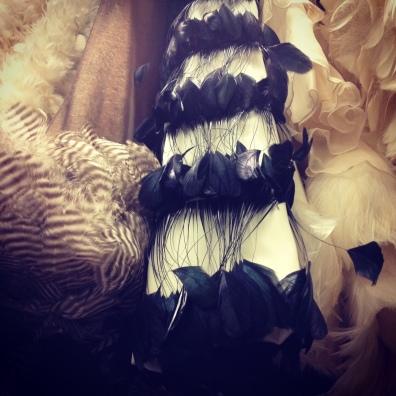 Feathered fashion.