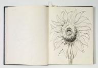 Otis Dozier, Sketchbook, 1974, Dallas Museum of Art, gift of The Dozier Foundation.