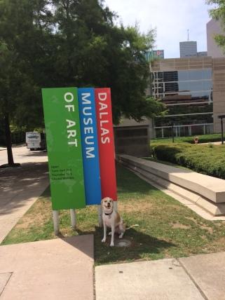 Jane the Dog, DMA signage spokesdog