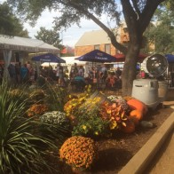 A nice group of fall flowers and pumpkins in the beer garden. A perfect place to try Dallas's own Community Beer Company brews. We especially liked the Funnel Cake Ale!