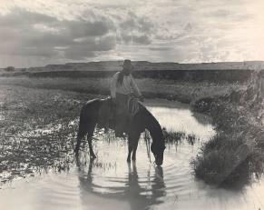 Erwin E. Smith; Frank Smith, Watering His Horse, Cross-B Ranch, Crosby County, Texas; c. 1909; Dallas Museum of Art, Dallas Art Association Purchase