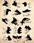 shadow-puppets-lyla-blu-by-gillian