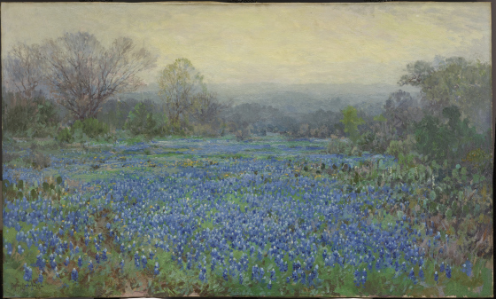 Untitled (Field of Bluebonnets), Julian Onderdonk, 1918-1920, Dallas Museum of Art, bequest of Margaret M. Ferris.