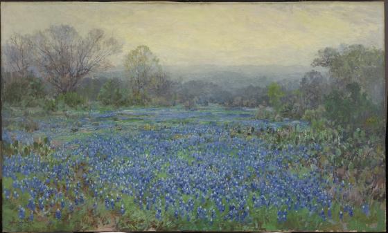 Untitled (Field of Bluebonnets), Julian Onderdonk, 1918-1920, Dallas Museum of Art, bequest of Margaret M. Ferris.