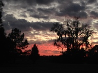 Lindsay captured a Gone With the Wind sunset while in the Lowcountry Region of South Carolina.