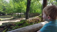 Sarah stayed close to home and visited the Fort Worth Zoo with her son Rhys.